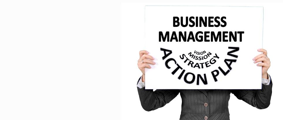 Work as a developper, an analyst, an expert or a project leader.